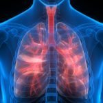 New Evidence Shows Omega-3 DHA May Protect the Lungs